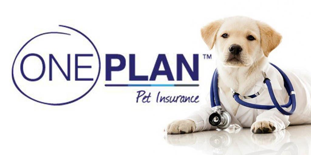 oneplan pet insurance